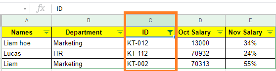 wild cards in google sheets